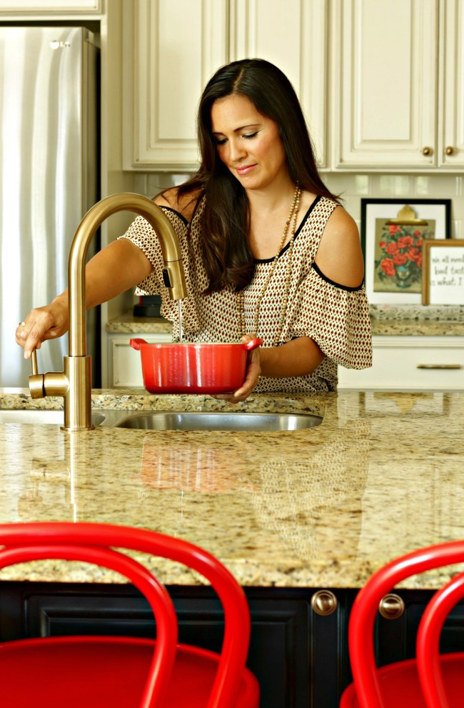 new delta kitchen faucet
