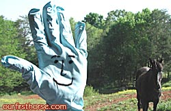 Mr. Hand
