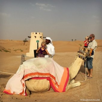 Arabian Nights Village   Family Adventure in the Abu Dhabi Desert   OurGlobetrotters.Com
