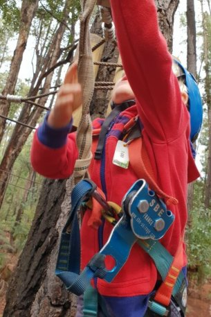 Fully harnessed and in action Trees Adventure Lane Poole Dwellingup