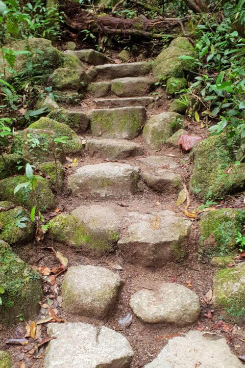 Slippery stone steps in Mossman Gorge Queensland