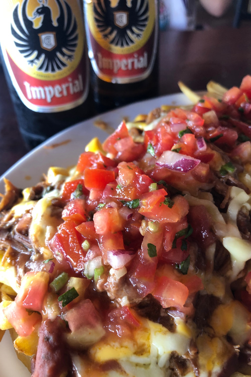 Loaded Fries The House (1)