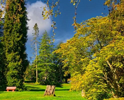 Dominion Brook Park, North Saanich, BC