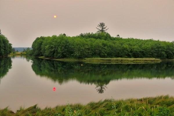 Baikie Island Nature Reserve