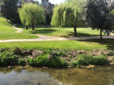 Carcassonne-April-2019-Geri-lunch-domaine-D'auriac-view