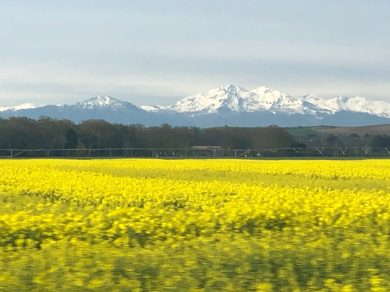 Carcassonne-April-2019-pyrenees-from-bus-to-Toulouse