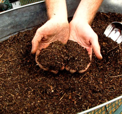 Composting 101: What is Green & Brown?