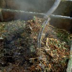 Composting 101: What is the Difference in Hot and Cold?