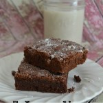 Five Ingredient Fudgy Brownie Recipe (Dairy-Free)