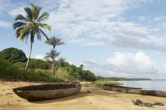 suriname jungle beach honeymoon destinations