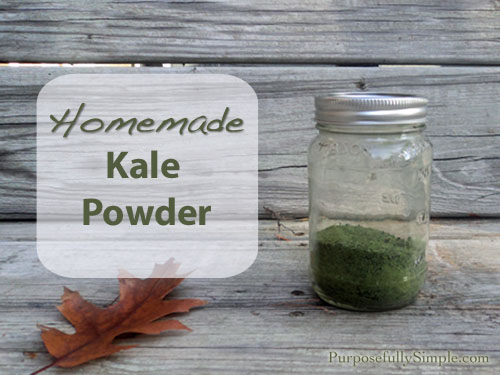 Homemade kale powder is a great way to preserve too much garden kale. Add it to your favorite smoothie for a nutritional punch.