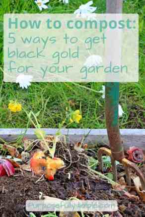 Wondering how to compost? It's pretty simple once you learn a few key tips for turning your kitchen scraps into plant food. Find out how easy it is!