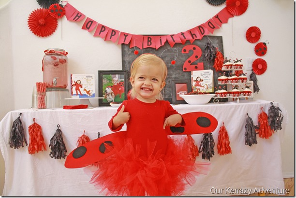 Little Girl Birthday Party Ideas; Lady Bug Girl Our Kerrazy Adventure