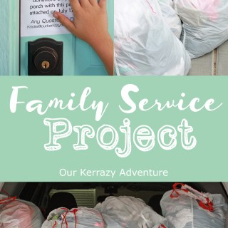 Family Service Project Idea