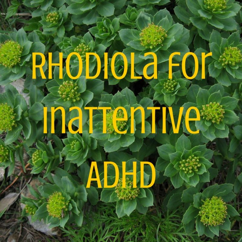 Rhodiola for Inattentive ADHD