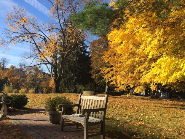 autumn at OLC