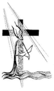 MOSTHOLYTRINITY14