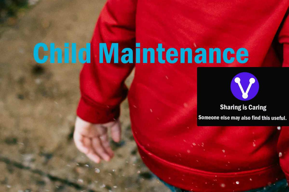 Child Maintenance and Support Services and Assistance