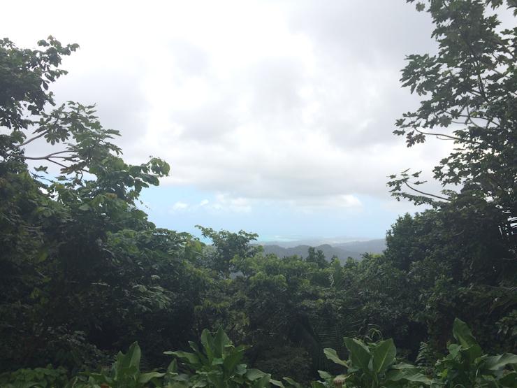 Puerto-Rico-Rio-Grande (6 of 13)