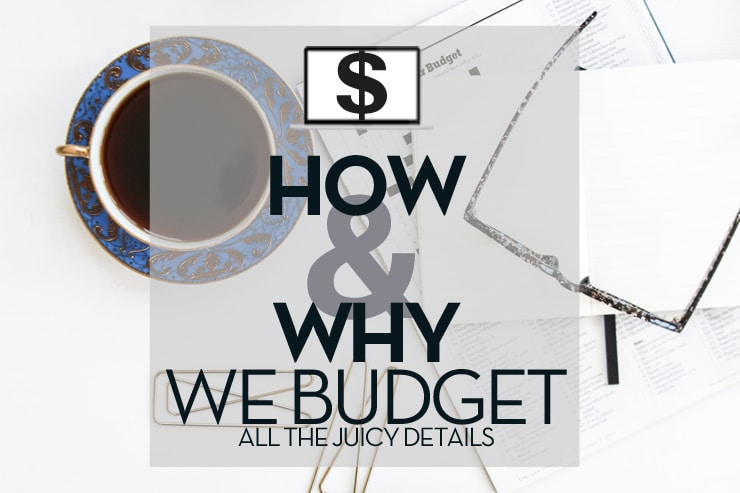 how-why-we-budget
