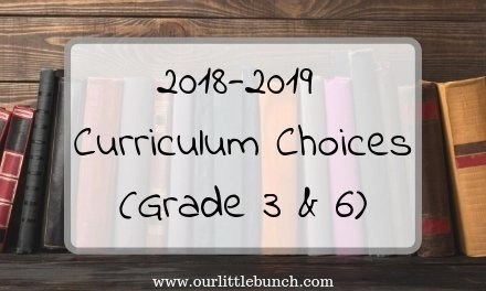 Our 2018-2019 Curriculum Choices (Grades 3 & 6)