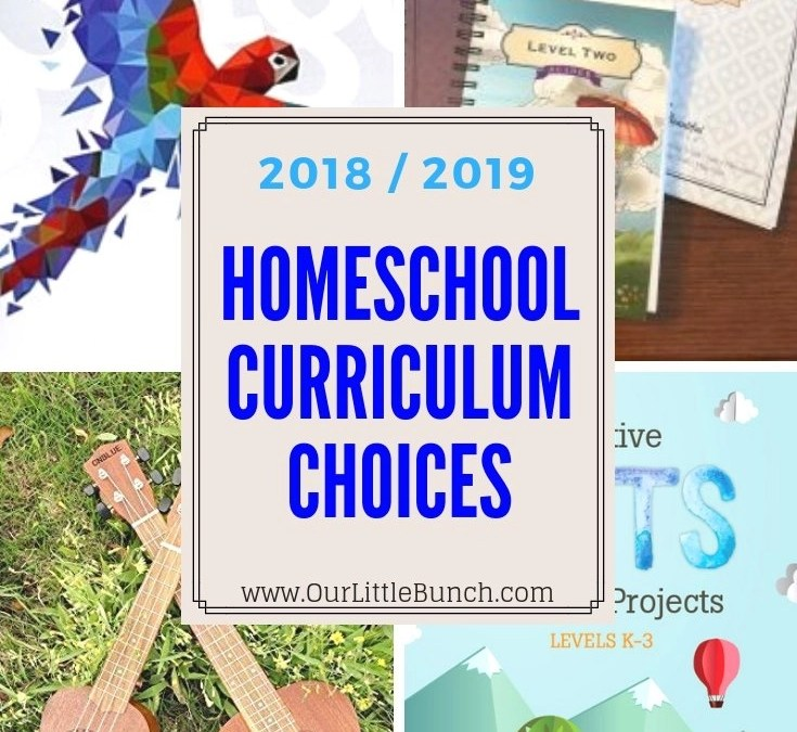 2018-2019 Curriculum Choices (Grades 3 & 6)