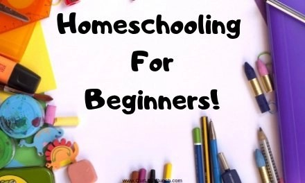 The Beginners Guide To Homeschooling