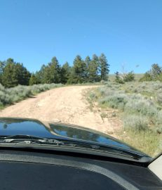 """Some of the ruts on this """"road"""" were huge washouts and we had to navigate around them."""