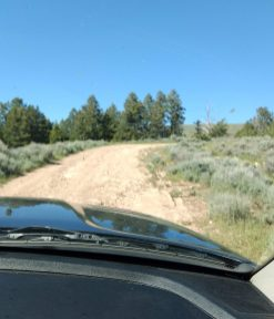 "Some of the ruts on this ""road"" were huge washouts and we had to navigate around them."