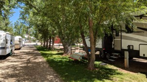 Ten Broek RV Park & Cabins is very shady and cool in the warm summer sun, but you have to parallel park your rigs here!