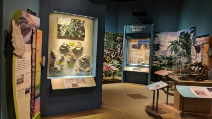 """There are two sides to the main exhibits, this is the """"natural history"""" side of the area, at Washakie Museum, Worland, WY"""
