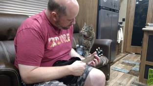 Rico seems to not like the Ukulele practice