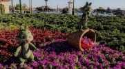 20190306 Chip and Dale Epcot Flower and Garden Festival