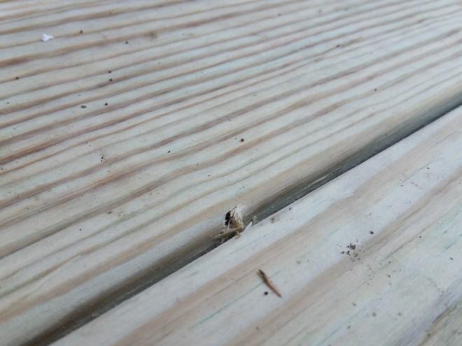 Kreg jig screw hole back deck