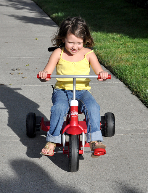 How Do You Roll Radio Flyer Ride Amp Stand Stroll N