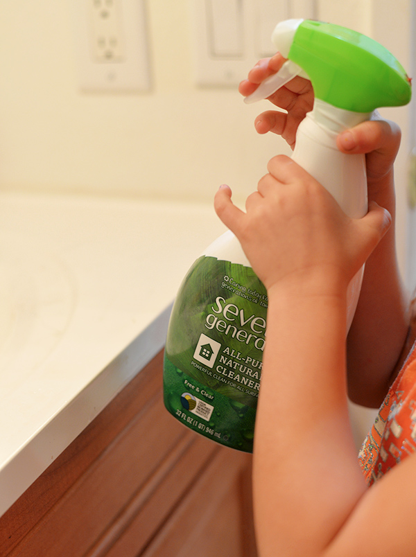 Seventh Generation All Purpose Natural Cleaner (3)