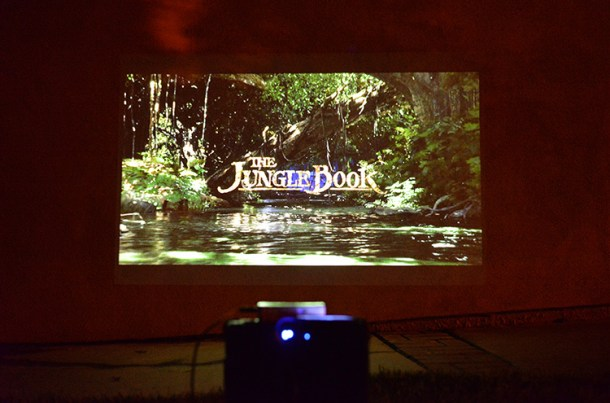 jungle-book-outdoor-viewing-night