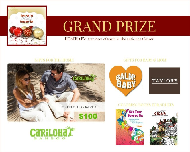 home-for-holidays-grand-prize-2