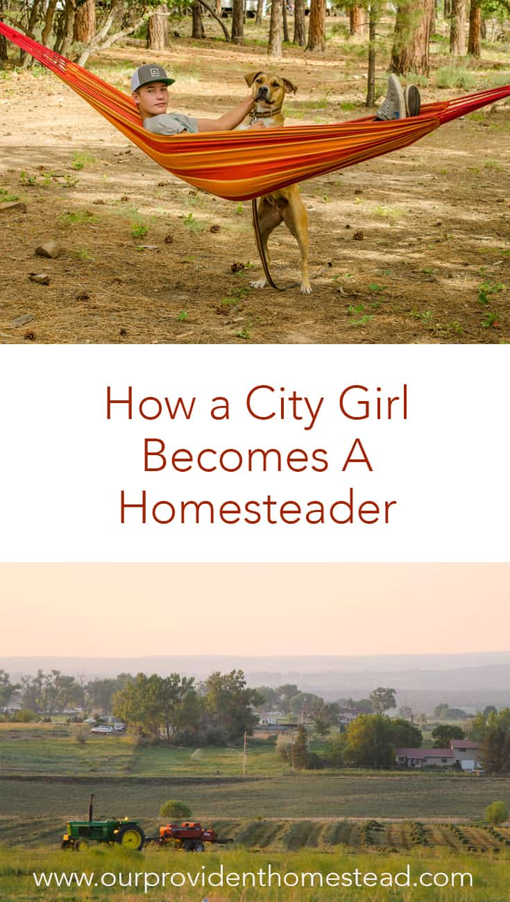 How does a city girl become a homesteader? Click here to see how I moved from the city to the country and why my family chose this lifestyle. #homesteader #countrylife #homesteading