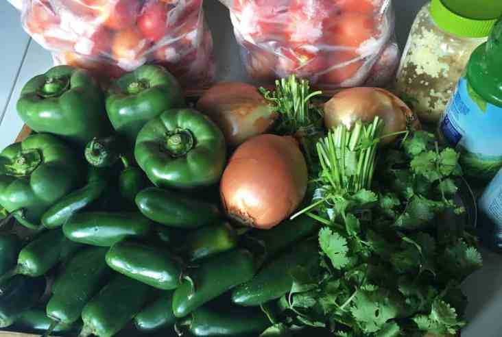 As the winter wears on, my mind turns to the promise of spring. As a talked about in this post, I am ready for spring. I am ready to get outside and start growing food again. I love having fresh food at my fingertips.Winter canning   food preservation   homemade salsa