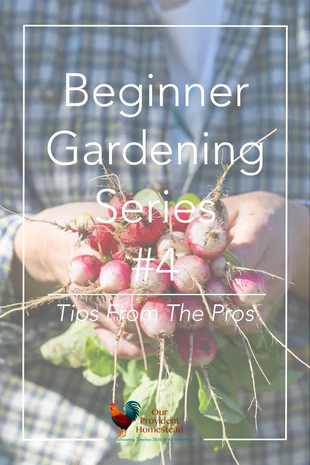 Are you new to gardening? Our beginner gardening series will help answer your questions, including tips and advice from the pros. #gardening #beginnergardening #gardeningtips