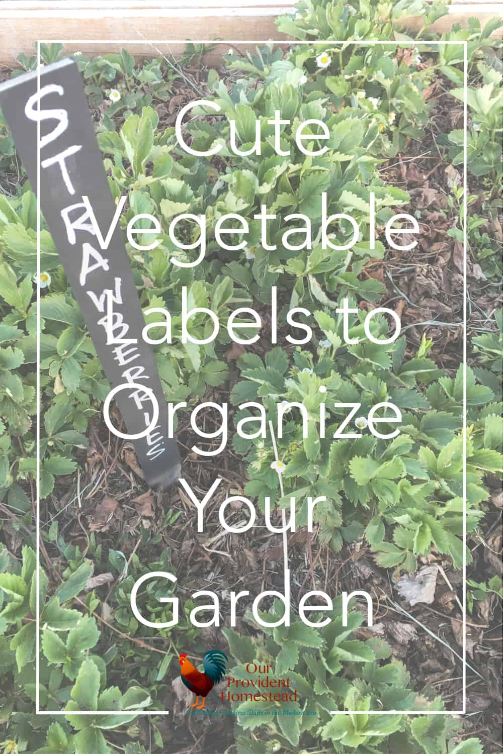 How do you make your garden look pretty and organized? These fun and cute vegetable labels are a quick way to organize your garden. Gardening | Garden Labels | Vegetable Markers