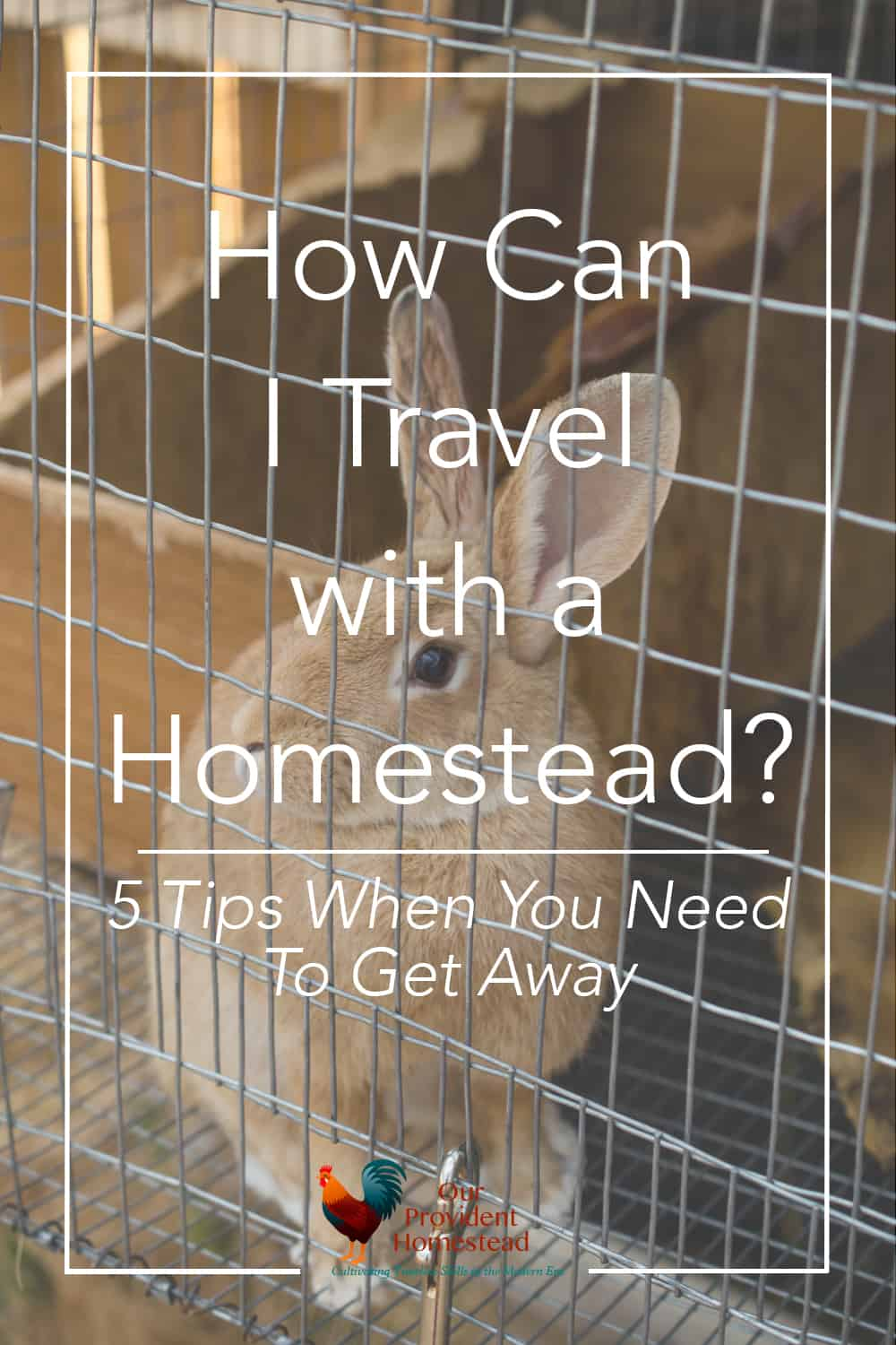 What happens when you need to leave your homestead for a few days? Click here for ideas of automated solutions for when you need to get away. Travel | Homesteading | Automated Systems