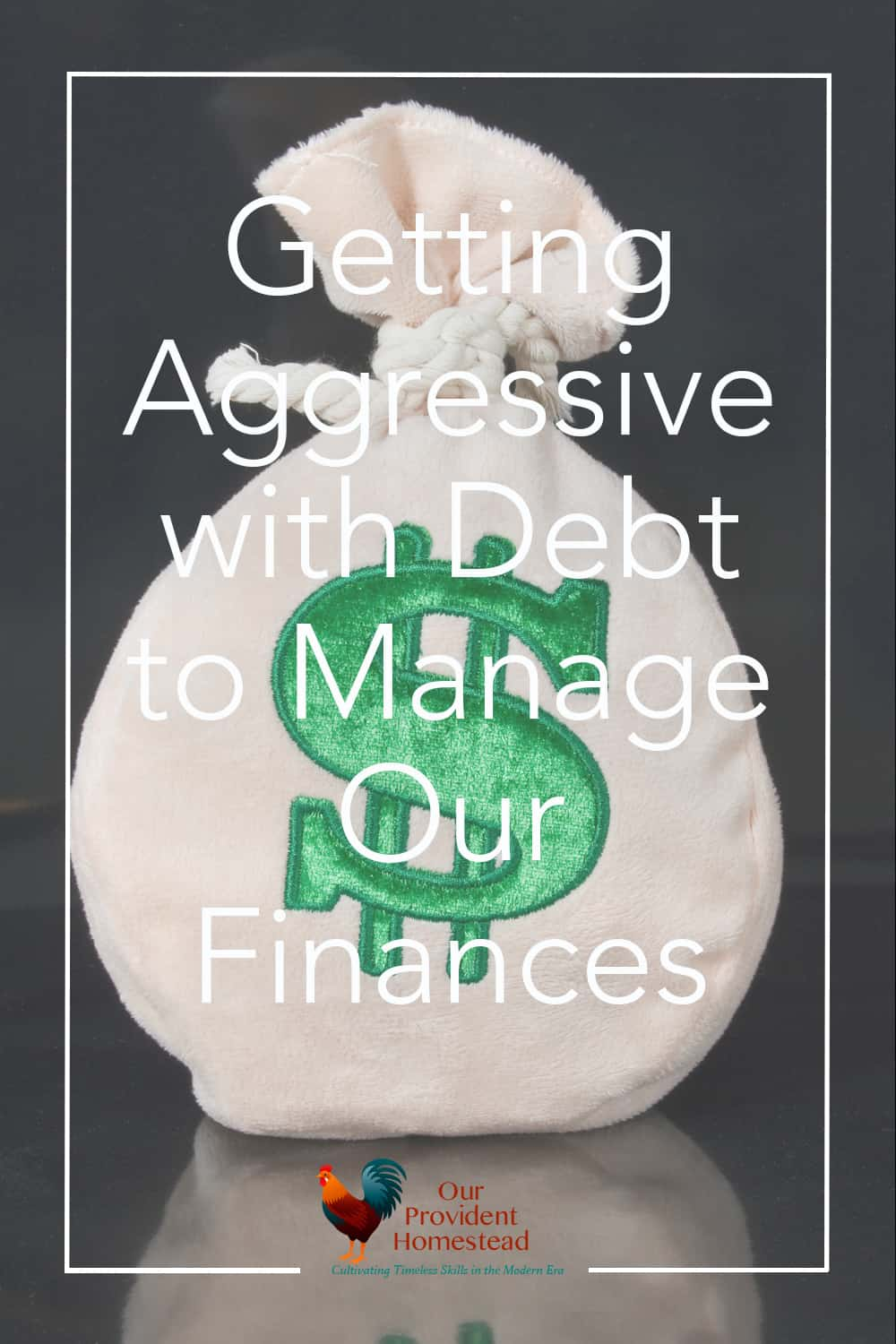 Do you struggle with debt? We do too. Click here to see what we are doing to get out of debt and quit living month to month. Getting out of debt | Family Finances | YNAB