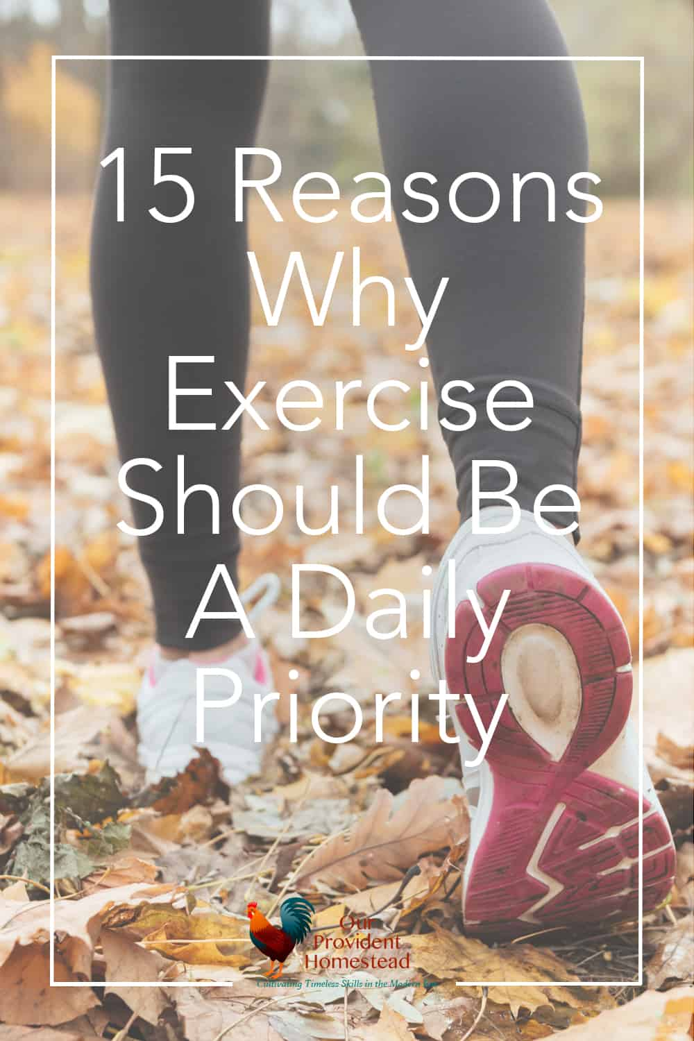 Is exercise part of your daily routine? Click here to see why exercise is important and how we can incorporate it into our daily lives. #exercise #health #healthyhabits