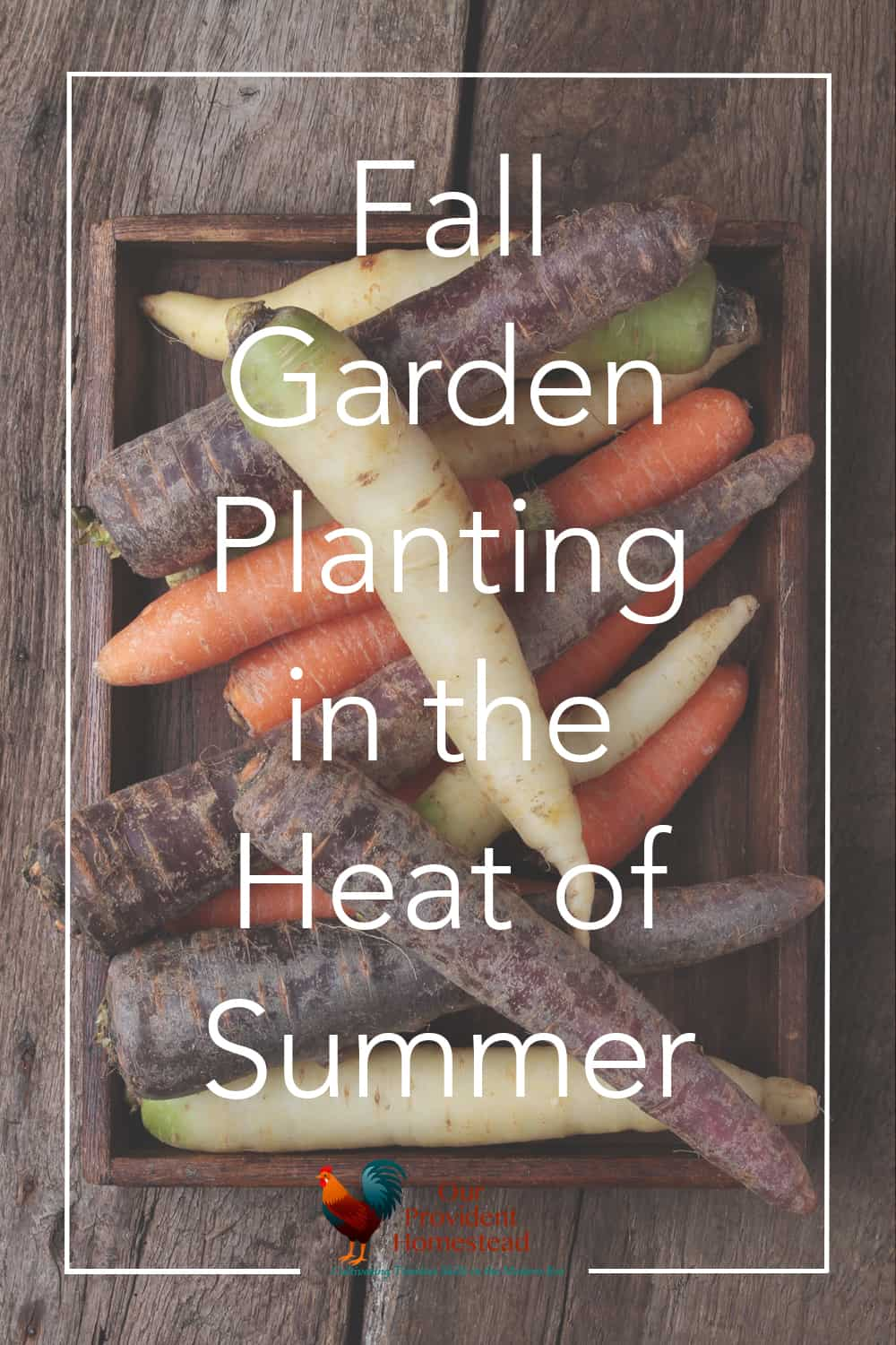 Do you love the harvest from your summer garden? Click here to see how you can extend the season with a fall garden and enjoy even more produce. Fall Garden | Garden Planting | More Harvest
