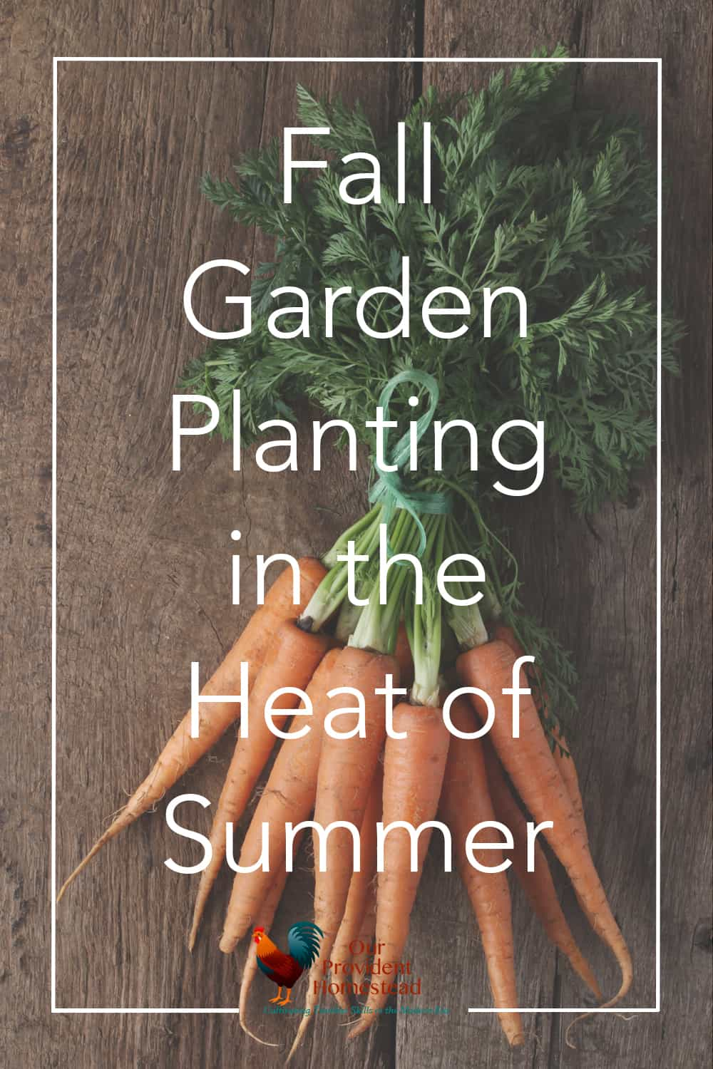 Do you love the harvest from your summer garden? Click here to see how you can extend the season with a fall garden and enjoy even more produce. #fallgarden #gardening #gardenideas #harvest #beginnergardening