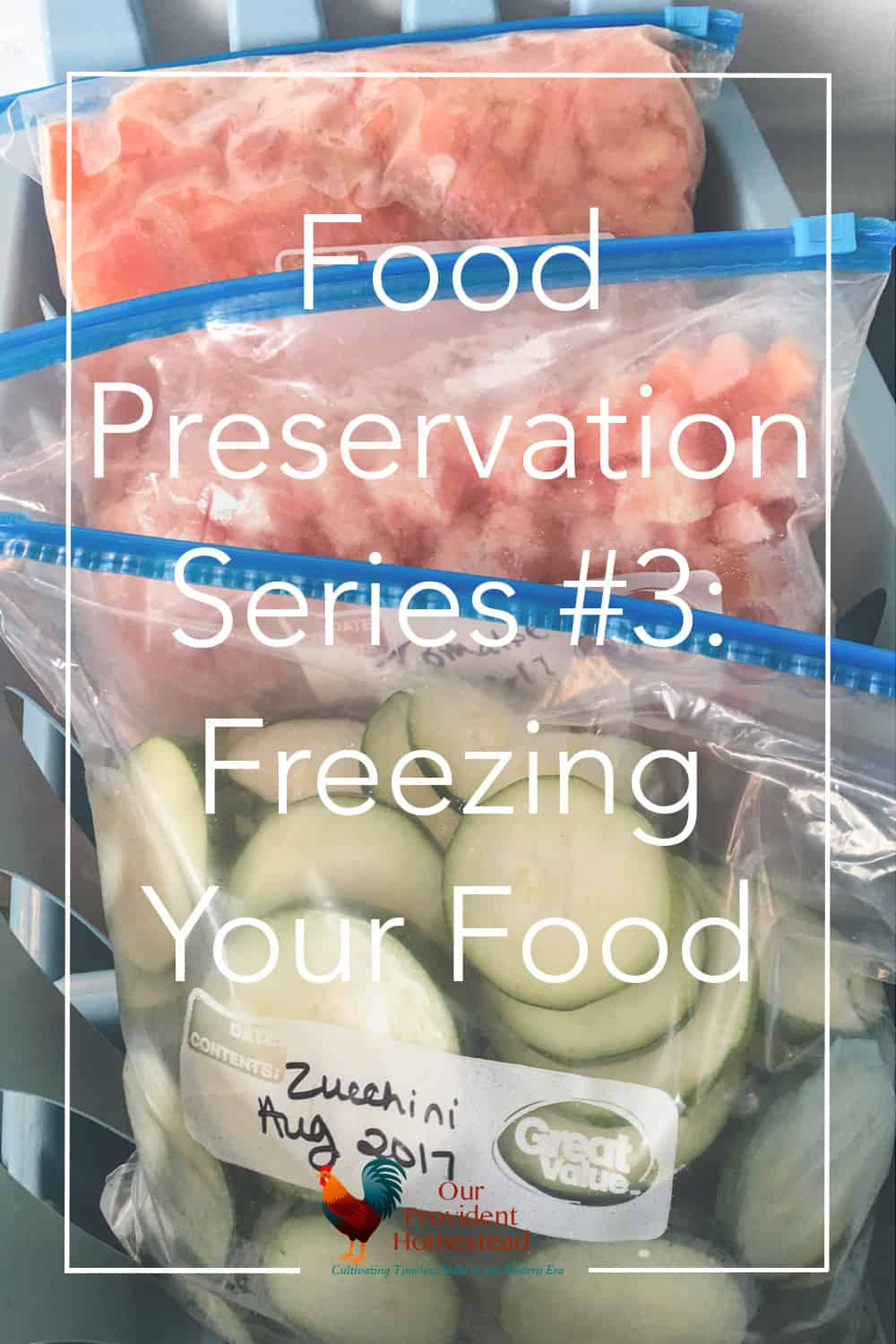 How do you preserve your food at home? Click here to discuss freezing as one way to preserve food in our four part preservation series. #foodpreservation #harvest #gardening