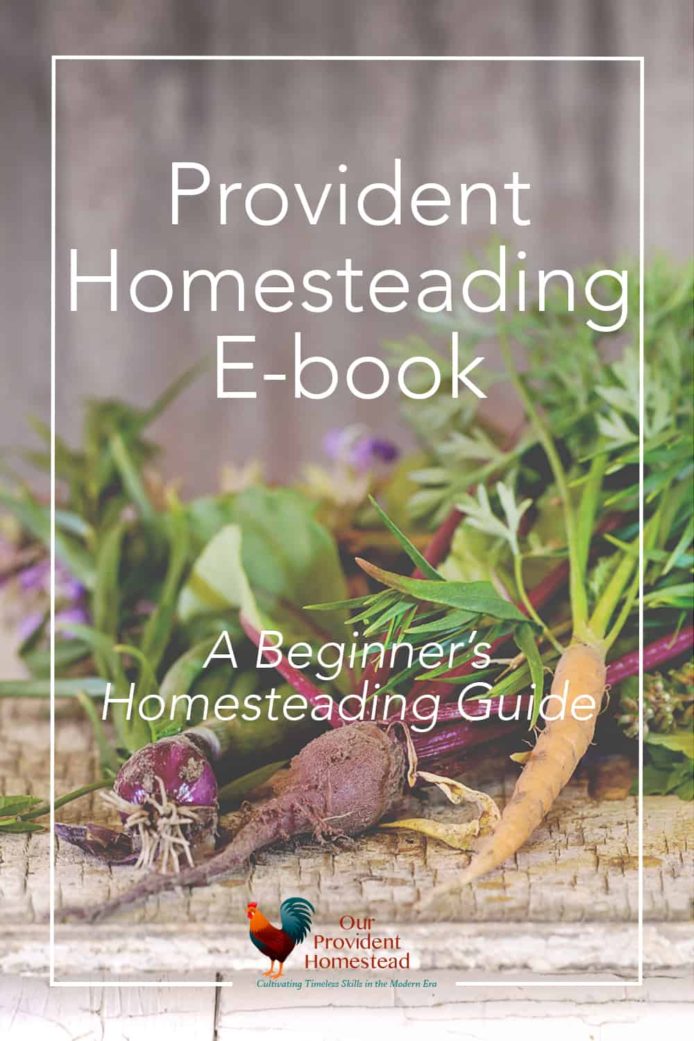 our provident homestead