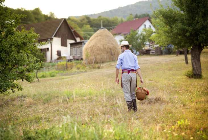 Where do you fit in on the homesteading spectrum? There are many types of homesteaders from off grid to small farms to urban homesteaders. Click here to see why we are modern homesteaders and some basic beliefs most homesteaders follow. #modernhomesteader #homesteading #homesteadideas